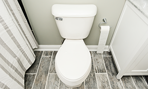 $160 for a Toilet Tune-Up and Home Plumbing...