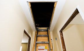 $499 Folding Attic Ladder Installation