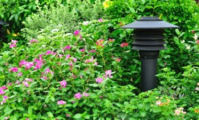$199 for Complete Landscape Lighting Design...