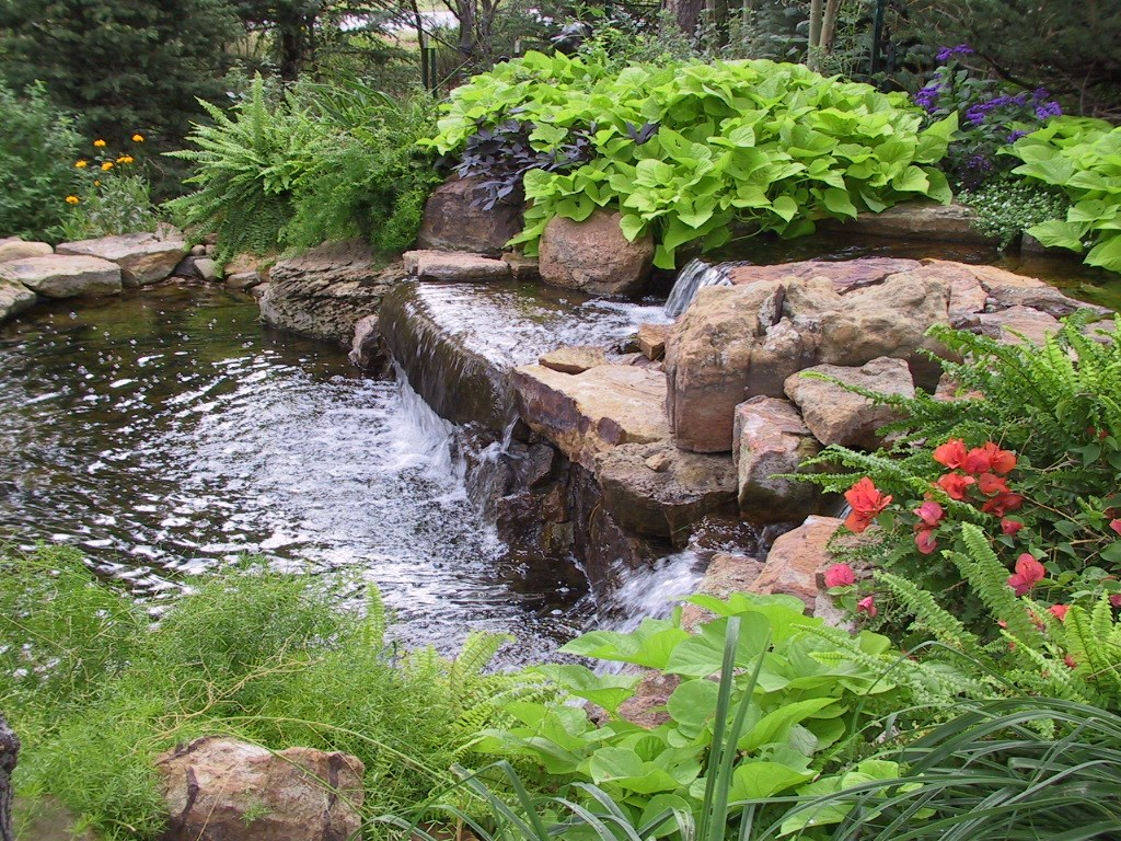 Personal touch landscape and gardening colorado springs for Pond water features waterfalls