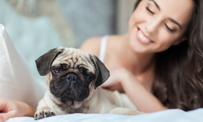 $38 for a 60-Minute Pet Sitting Visit