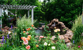 $50 On-Site Design Consultation with a Landscape...