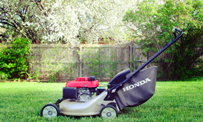 $129.95 for an Oversized Push Lawnmower Tune-Up