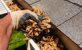 $89 for 175' Gutter Cleaning with Roof Debris...