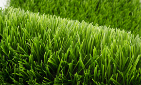 $298 for an Eco-Friendly Lawn Fertilization...