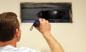 $180 for Air Duct Cleaning (10 vents)