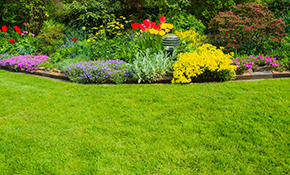 $999 for a Seasonal Lawn and Landscape Maintenance...