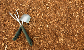 $499 for 750 Square Feet of Premium Mulch...