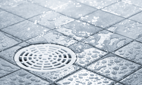 $270 for Mainline Drain Cleaning