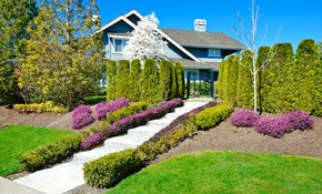 $195 for 8 Hours of Landscaping Service,...