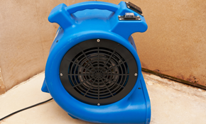 $399 for a Water Damage Equipment Rental