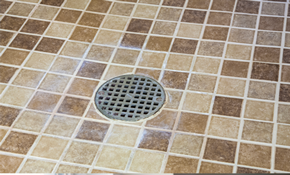$225 for Walk-In Shower Floor Re-Grouting