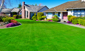$199 for 4 Custom Lawn Fertilizer and Weed...