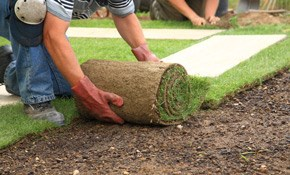 $485 for 450 Square Feet of Fresh Sod Installed