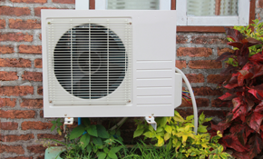 $89 for Evaporative Cooler Start-Up, Cleaning,...