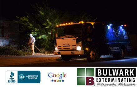 Scorpion Truck at night