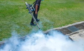 $99 for a General Pest Control Treatment