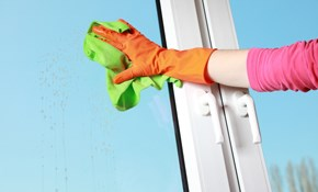 $155 for 3 Hours of Exterior Window Cleaning