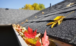 $130 for Gutter Cleaning with Roof Debris...