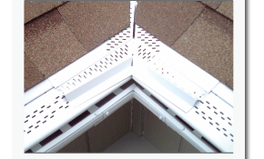 $249 for Installation of Gutter Protection...