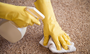 $69 for 2 Rooms of Carpet Cleaning, Plus...