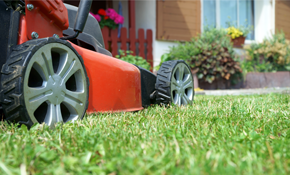$186 for Snow Blower and Lawnmower Tune-Up