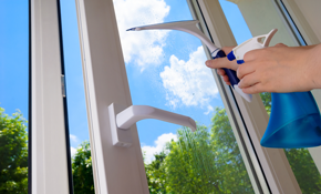 $159 for Cleaning 20 Windows, Screens, Sills,...