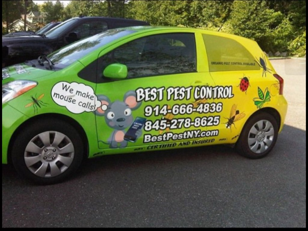 Best Pest Control Service Inc Brewster Ny 10509