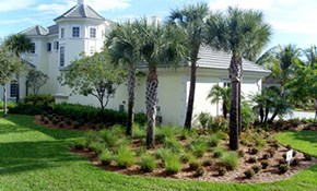 $50 for $200 Toward a New Landscape Design...