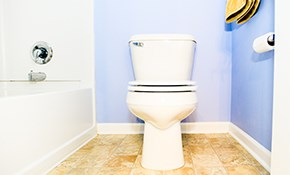 $110 for a New Toilet Installed