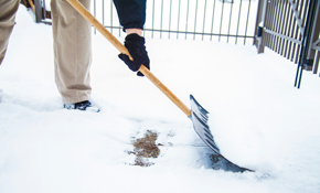 $50 for Driveway Snow Plowing (third service...