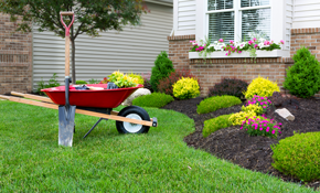 $332 for 4 Hours of Landscaping Services