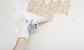 $150 for 3 Hours of Wallpaper Removal