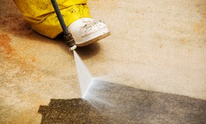 $165 for Driveway and Sidewalk Soft Washing