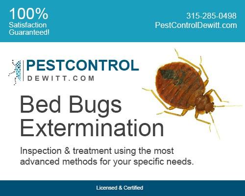 Pest Control Dewitt Dewitt Ny 13214 Angies List