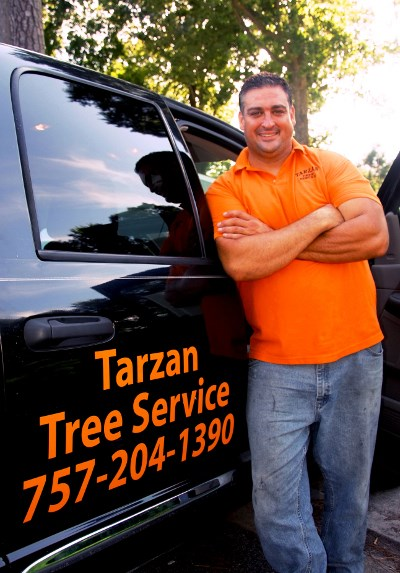 how to become a certified arborist in virginia