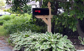 $225 for Wood Post/Standard Mailbox and Installation...