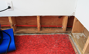 $20 for Basement Waterproofing Consultation...
