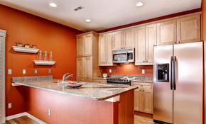 $495 for a Kitchen or Bathroom Design Consultation...