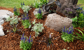 $100 for 30 Cubic Feet of Mulch (Includes...