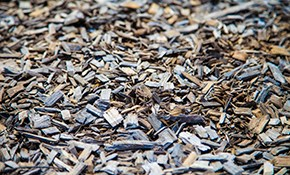 $330 for 5 Cubic Yards of Premium Mulch Delivered...