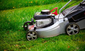 $35 for a Walk Mower or Pressure Washer Estimate...