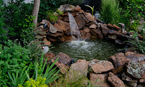 $299 for a Professional Landscape Design