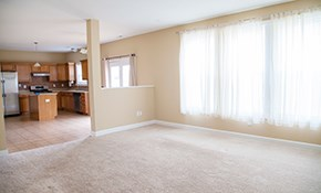 $125 for 5 Rooms of Eco-Friendly Carpet Cleaning...