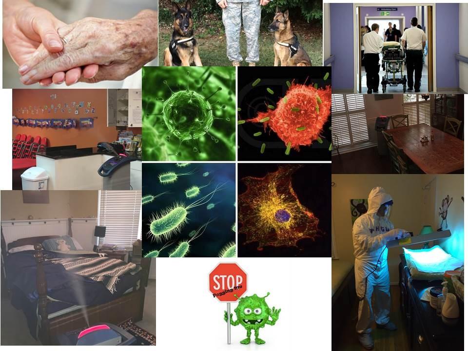 Pathogend Of Georgia Roswell Ga 30077 Angies List
