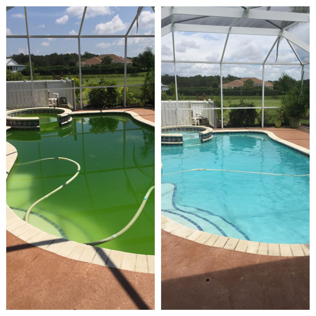 Bauman pools and pressure washing services llc palmetto for Pressure clean pools