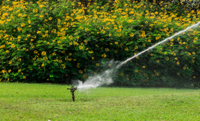 $2,880 for a Five-Zone Rainbird Sprinkler...