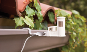 $20 Comprehensive Irrigation System and Lawn...