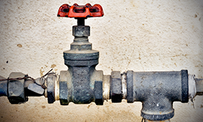 $67.50 for an Irrigation Backflow Test