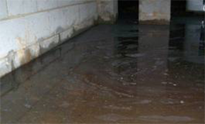$200 for Basement Waterproofing Consultation...